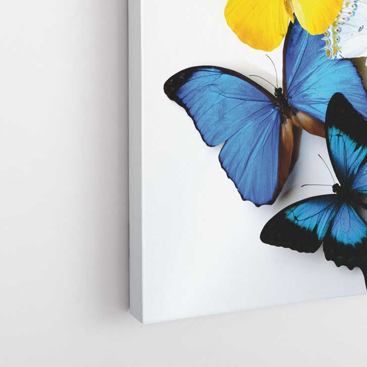Renkli Kelebekler Kanvas Tablo-D049