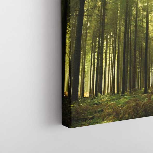 Ağaç ve Günışığı Temalı Kanvas Tablo -Y041