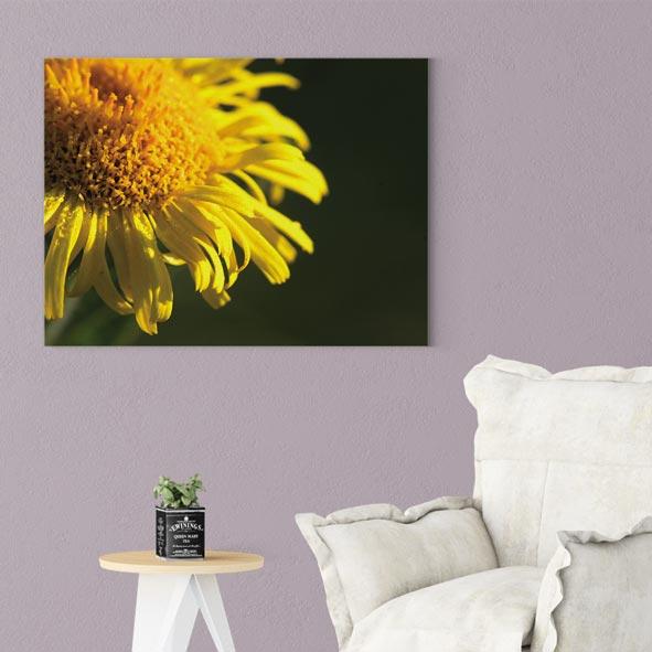Çiçek Temalı Kanvas Tablo-Y243