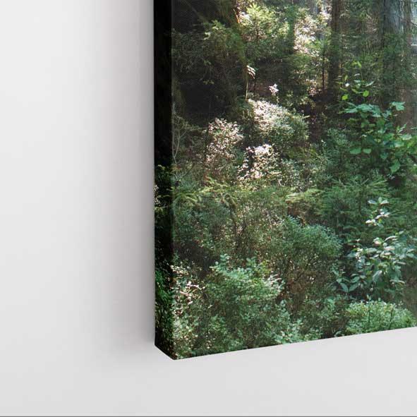 Doğa Manzaralı Kanvas Tablo - D025