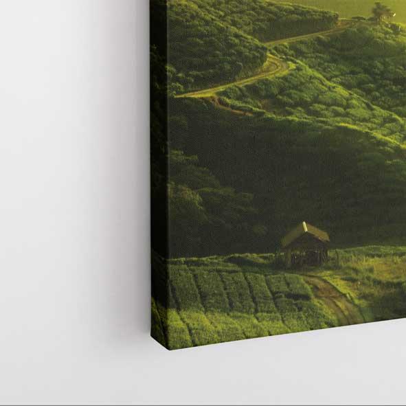 Doğa Manzaralı Kanvas Tablo - D035