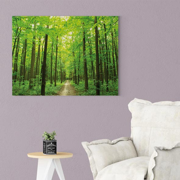 Orman Temalı Kanvas Tablo-Y042