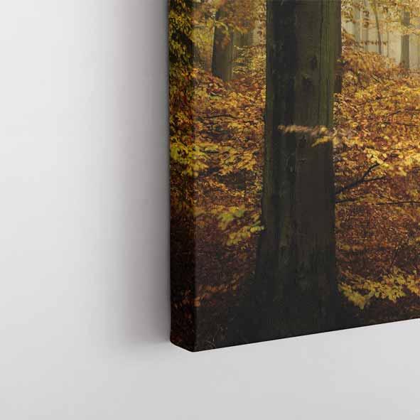 Sonbahar Ormanı Temalı Kanvas Tablo-Y049